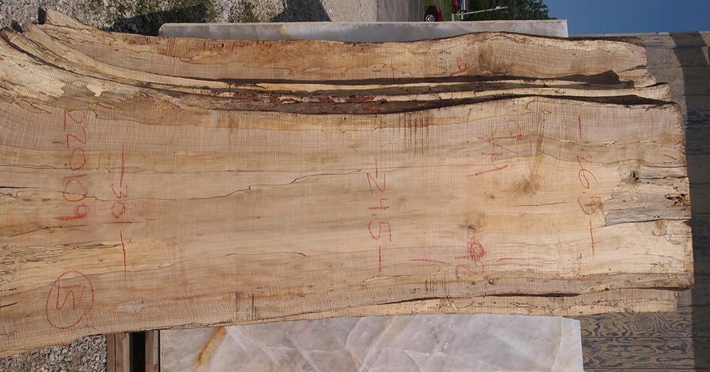 Spalted Maple Live Edge